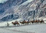 Pics that prove Ladakh is a paradise of India