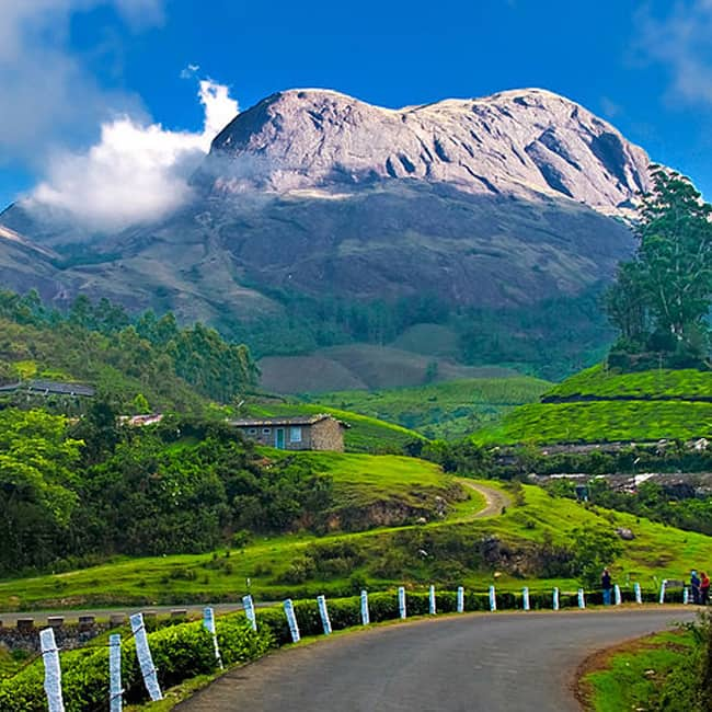 Kerala Places To Visit: An Alluring Picture Of Munnar In Kerala