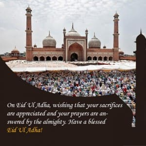 Eid Al-Adha 2017: Here are messages and wishes for your near and dear ones