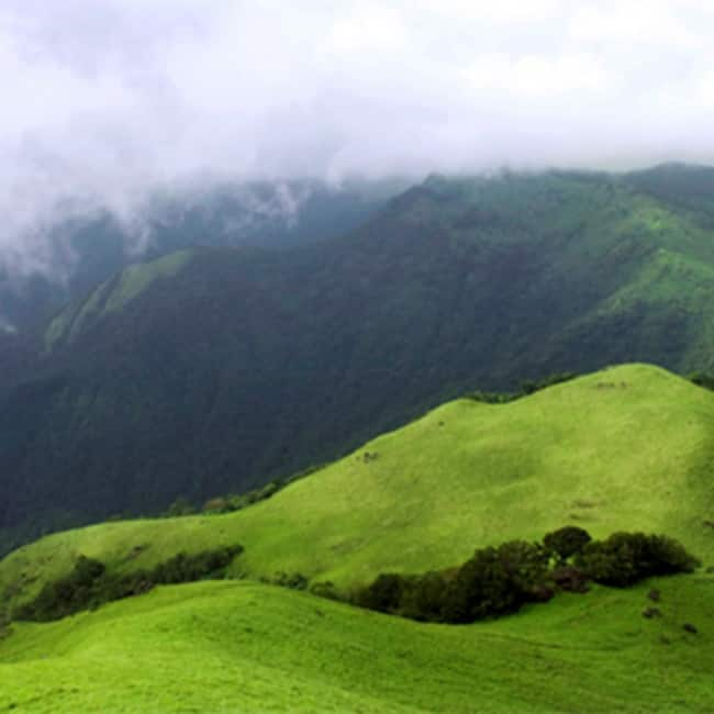 Places To Visit In Bangalore On Christmas: Explore The Beauty Of Coorg In Karnataka In The Month Of