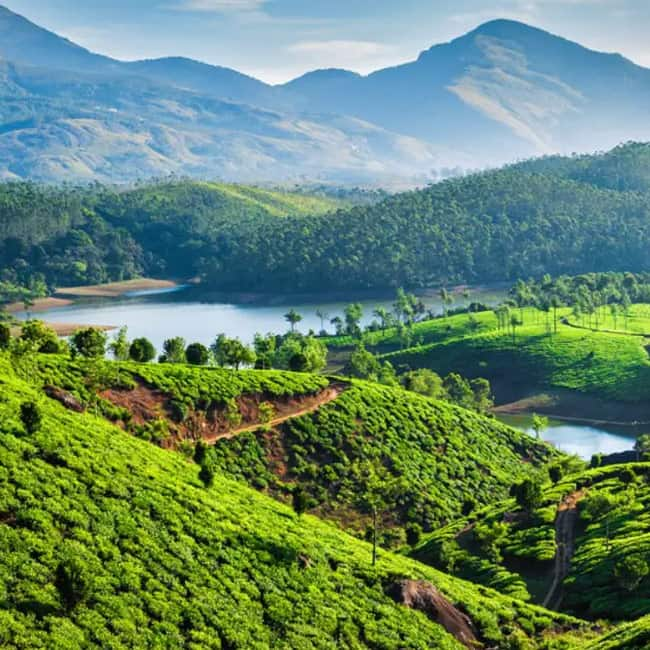 Kerala Places To Visit: Winter Special: Top 10 Places To Visit In India During