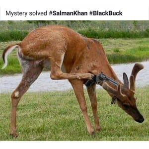 Salman Khan's acquittal: Meanwhile Internet solved the mystery of Black Buck Case!