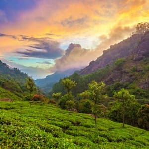 Places in India that can be a photographer's delight during Monsoon!
