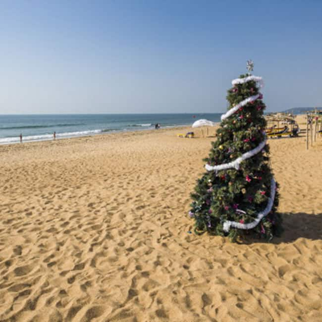Places To Visit In Bangalore On Christmas: Bangalore Is A Wonderful Place For Christmas Celebrations