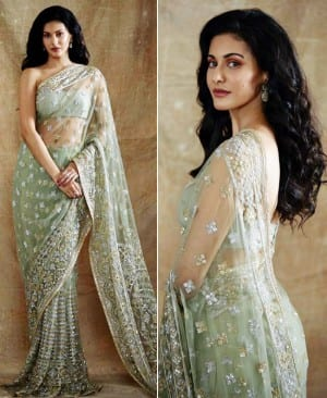Amyra Dastur Looks Magnificent In A Mint Green Sheer Saree By Manish Malhotra, See PICS
