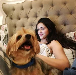Ananya Panday And Her Dogs Make For Perfect 'Quaranteam' And THESE Pictures Are Proof!
