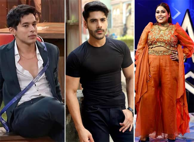 Check who is going to be locked up inside the Bigg Boss 15 house