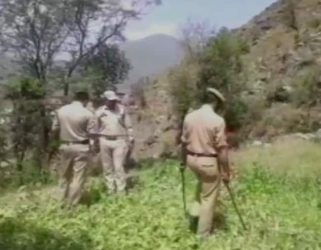 Five arrested for opium cultivation in Rajouri s Darhal