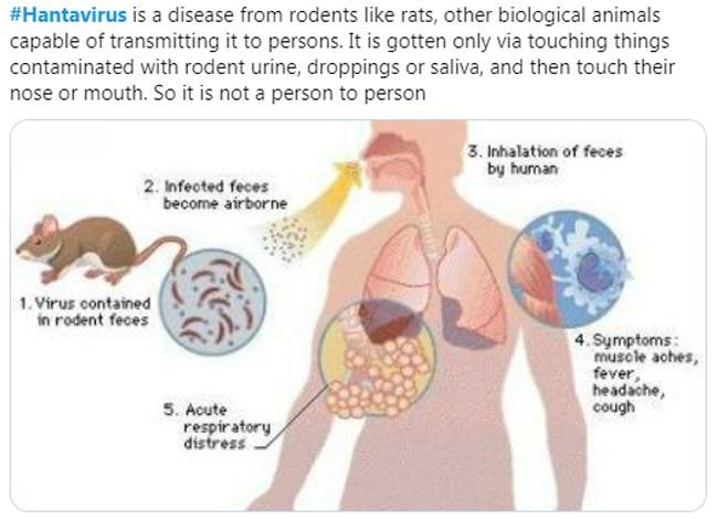 Hantavirus Disease