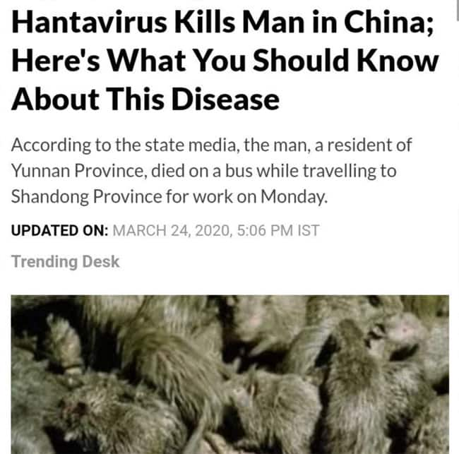 Hantavirus Spreads Scare All Over The Globe