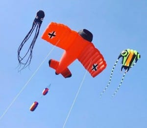 Kite Festival 2019 in Ahmedabad: Take a look at different types of highly-decorated kites