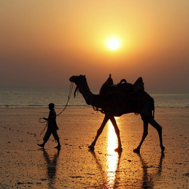 Kutch in Gujarat