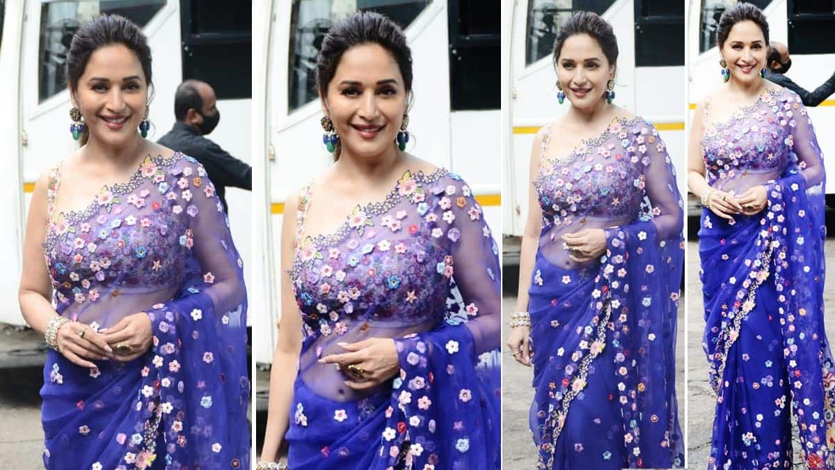 Madhuri Dixit looks straight out of a fairytale in her purple sheer saree