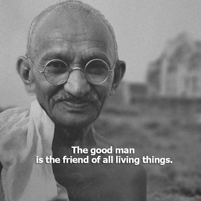 Mahatma Gandhi's quote on health