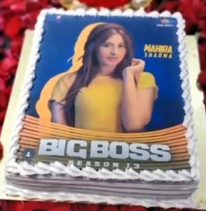 Happy Birthday: Bigg Boss Contestant Mahira Sharma Turns 22 Today