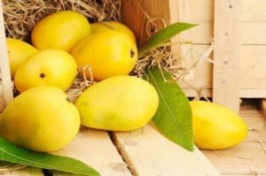 How Eating Mangoes in Summer Can Reduce Your Risk of Contracting Diseases Like Coronavirus?
