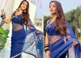 Monalisa Welcomes Weekend in a Sheer Blue Saree, Shares Beautiful Pictures on Instagram