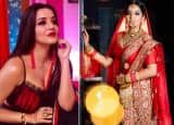 Monalisa Birthday: Check Pictures of Bhojpuri Hot Bomb Antara Biswas' Sexiest Best in Indian-Wear