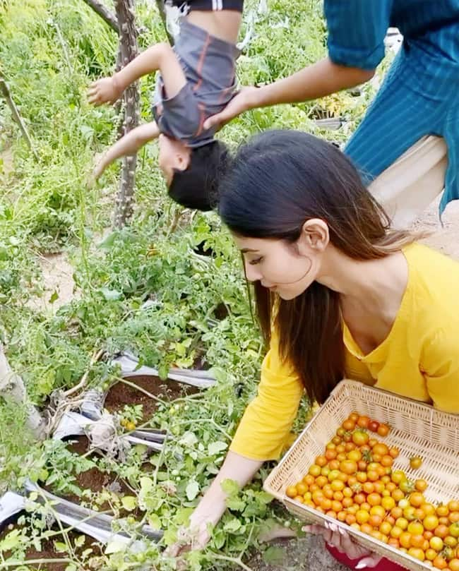 Mouni Roy is Busy Plucking Tomatoes