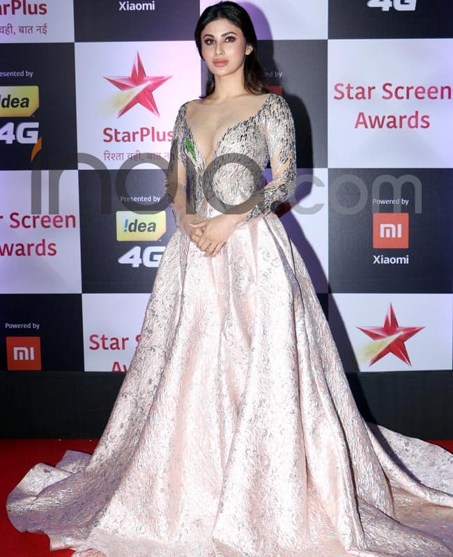 Mouni Roy is Everyone s Dream Girl in Her Stunning Gown at Star Screen Awards 2018