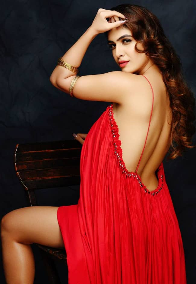 Neha Malik Goes Backless in Latest Alluring Picture in Sexy Red Gown
