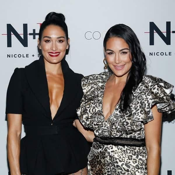 Nikki Bella and Brie Bella   The Stunning Looking Twins