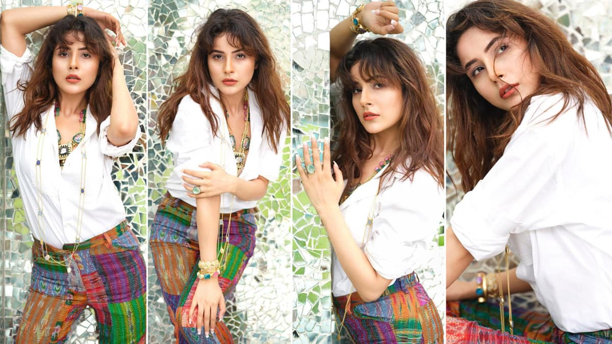 Shehnaaz Gill Breaks Internet With Her Sensuous Pictures From Dabboo Ratnani Bold Photoshoot