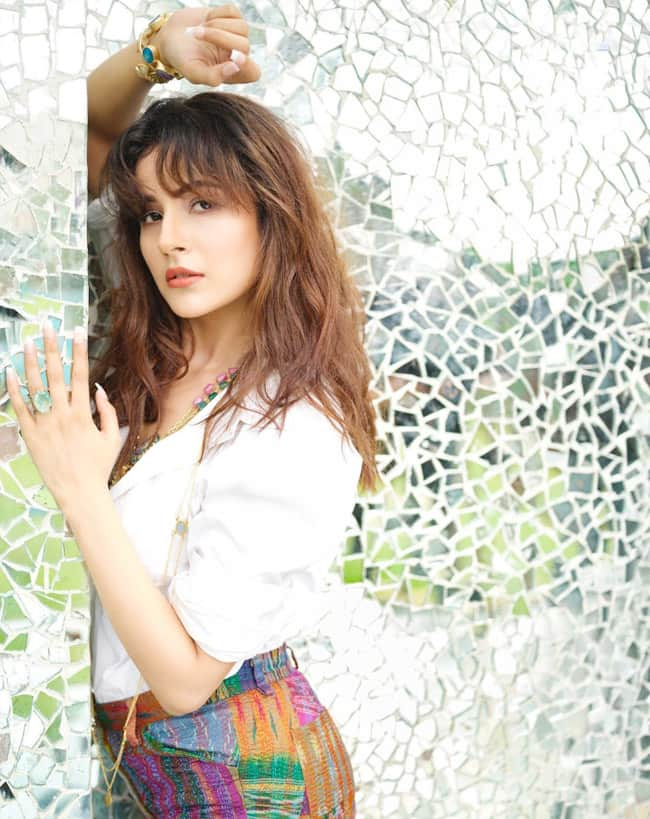 Shehnaaz Gill Raises Temperature With Her Hot Look