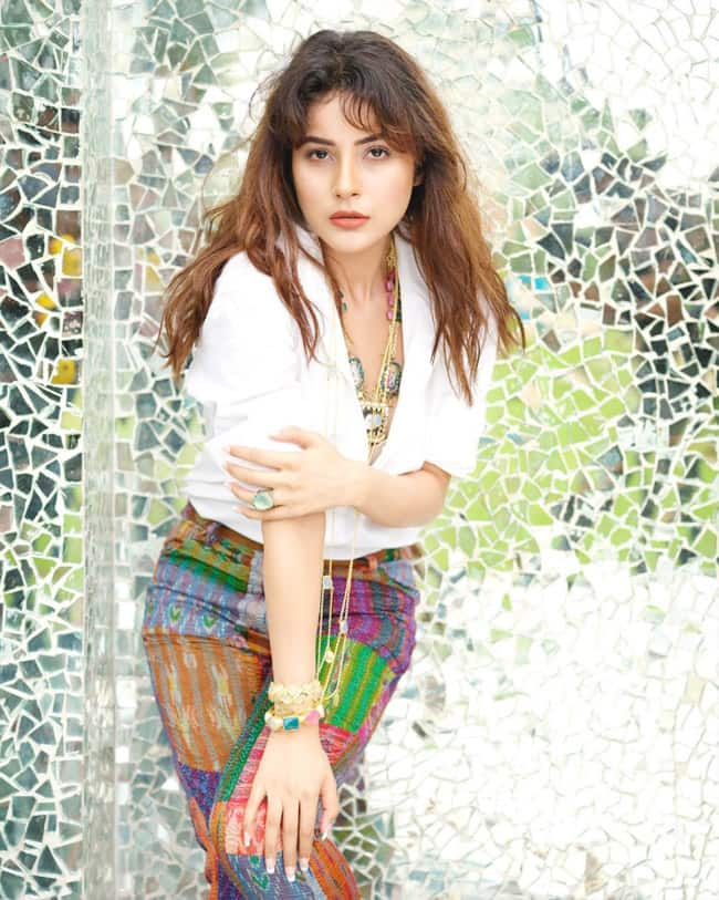 Shehnaaz Gill Turns Up The Heat In Latest Set of Hot Pictures
