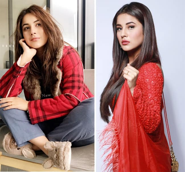 Shehnaz Gill Kaur s red hot vibes
