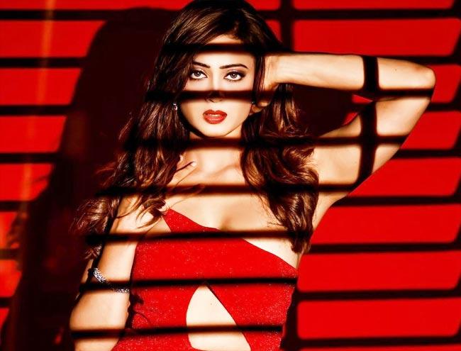 Shweta Tiwari   s smouldering hot photoshoot can make men go weak in the knees