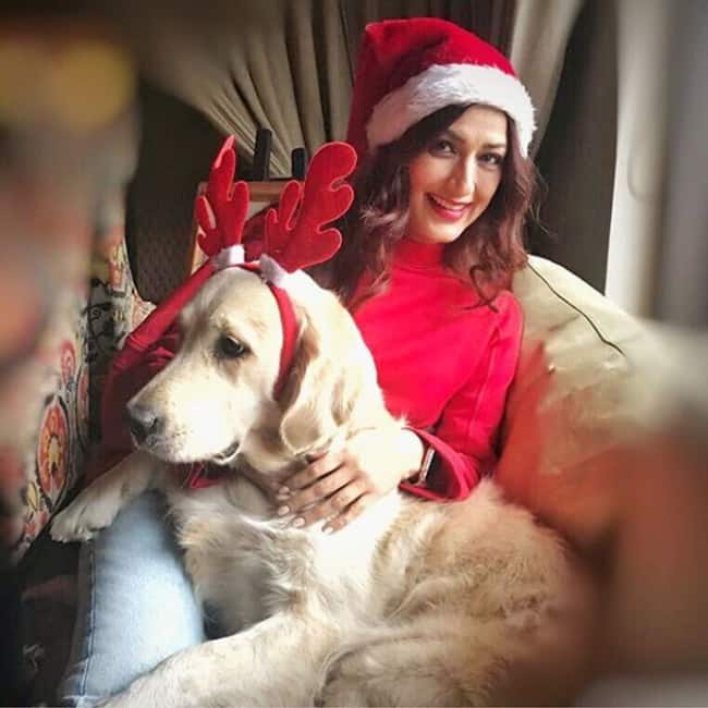 Sonali Bendre   s Christmas picture with her pet dog