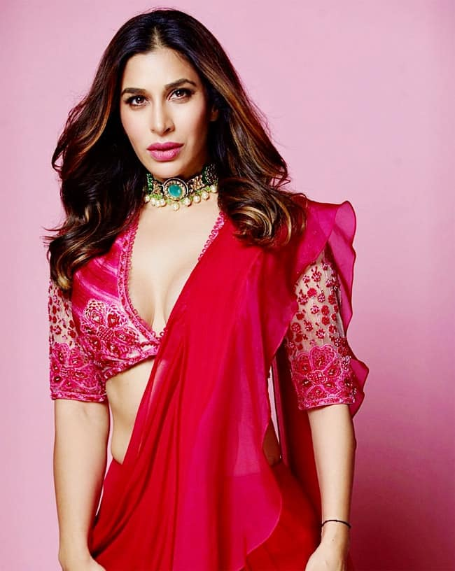 Sophie Choudhry is Resplendent in Pink Saree