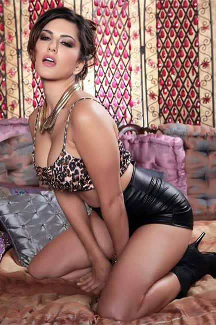 Sunny Leone poses for hot picture