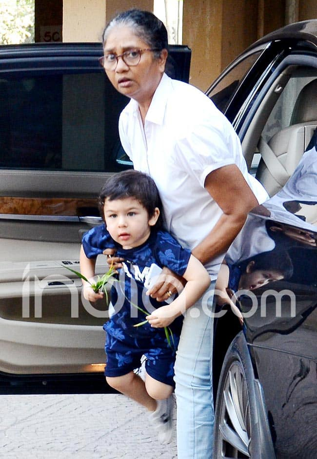 Taimur Ali Khan Looks Aww dorable as he is All Smiles Holding Grass in His Hands