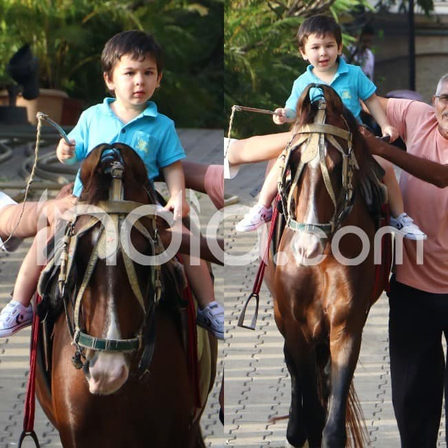 Taimur rides a horse all by himself