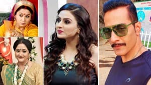 World Environment Day: From Anupamaa's Vanraj to Baa, Check Out How These TV Actors Are Taking Small Steps For Mother Earth