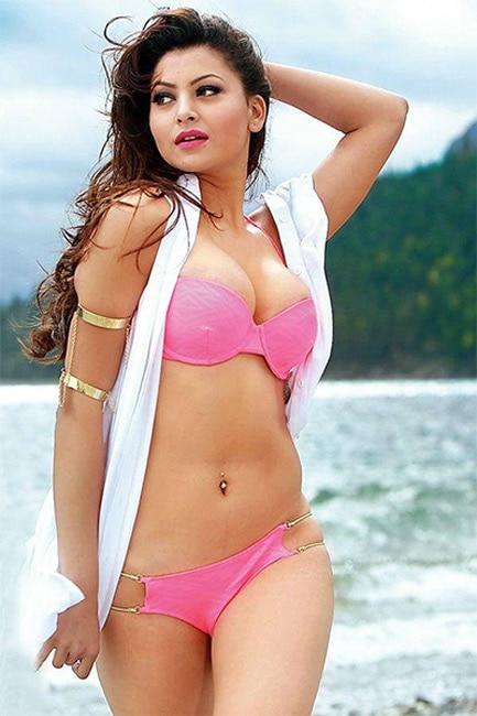 Urvashi Rautela posing in super sultry avatar