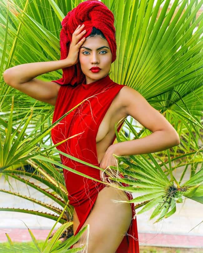 Urvi Shetty has won the fourth season of television show India s Next Top Model