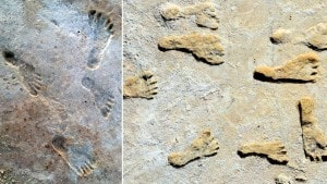 US: Ancient footprints re-write humanity's history in the Americas