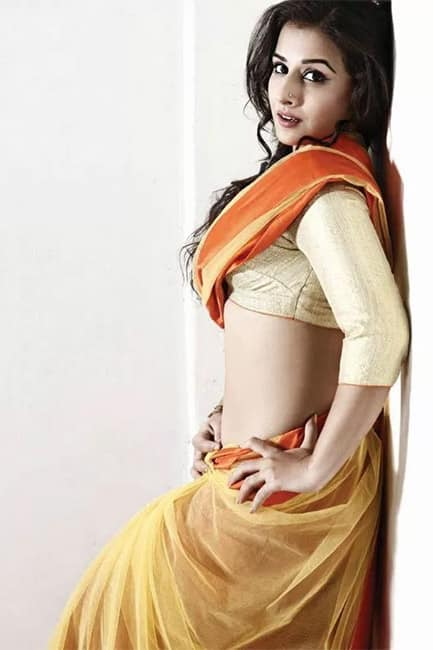 Vidya Balan looks extremely sexy in this picture