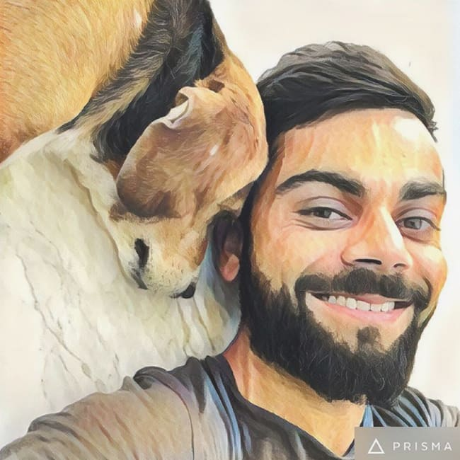 Virat Kohli shares a picture with his pet Bruno